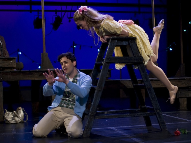The Fantasticks Show Image